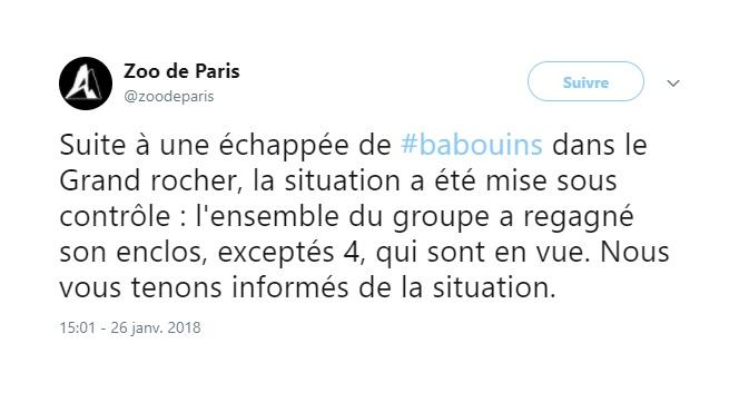 Paris. 50 babouins se sont échappés du zoo de Vincennes