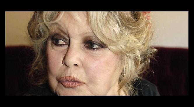 """Brigitte Bardot: """"Je souhaite que Marine Le Pen sauve la France, elle est la Jeanne d'Arc du XXIesiècle!"""""""