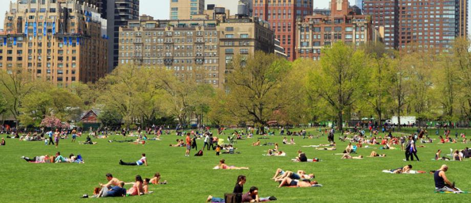 La ville de New York annonce qu'elle va fermer définitivement Central Park à la circulation à partir du 27 juin prochain