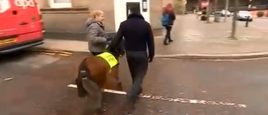 Un journaliste aveugle, phobique des chiens, s'apprête à devenir le premier Britannique à obtenir un cheval guide - VIDEO