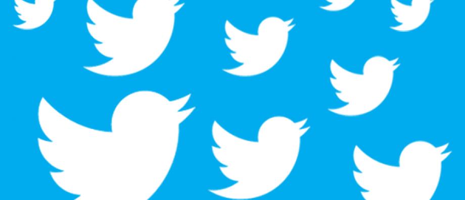 Quatre Français sur cinq utilisent au moins un réseau social chaque mois - Twitter arrive en tête des audiences