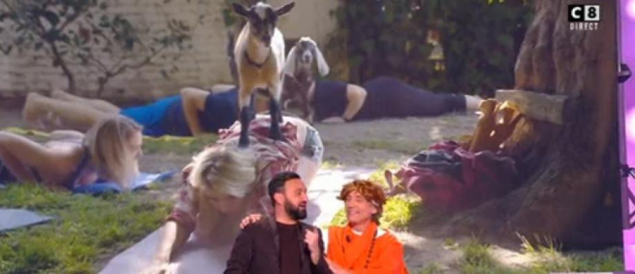 """8 ans de """"TPMP"""": L'ex-chroniqueur François Viot était de retour hier soir et a fait une démonstration de yoga ... avec des chèvres! - VIDEO"""