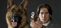 Le célèbre chien policier Rex va bientôt faire son retour en France et dans de nombreux pays dans une version produite au Canada