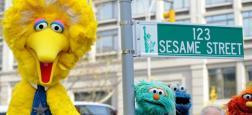 """Sesame Street: Après 50 ans à donner vie à la marionnette la plus célèbre de la télévision américaine, """"Big Bird"""", il va raccrocher !"""
