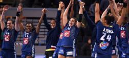 Audiences TNT:  Le téléfilm d'Arte plus fort que le championnat du monde féminin de handball diffusé hier soir en direct sur TMC
