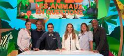 """Le jeu présenté par Alex Goude sur France 4 """"Drôlement bêtes"""" sera désormais diffusé en quotidienne à partir du lundi 5 novembre"""