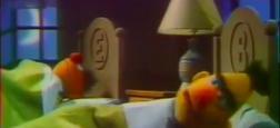 """Selon un scénariste, les deux personnages principaux d' """"1, Rue Sésame"""", les marionnettes Ernest et Bart sont bien gay"""