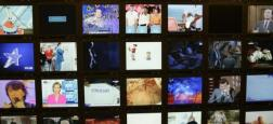 Prévue en février jusqu'ici, la réforme de l'audiovisuel va finalement être repoussée au mois d'avril, annonce le ministère de la Culture