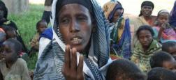 L'Afrique est assez peu représentée dans les journaux télévisés des grandes chaînes françaises, selon une étude de l'Ina publiée aujourd'hui, dimanche