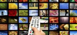 Audiences : France 2 et M6 réalisent un très beau mois de novembre alors que TF1 plafonne sous 20% - Les chaînes infos en baisse après une forte poussée liée à l'actualité