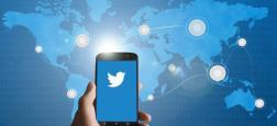 """La Turquie s'en est violemment prise à Twitter l'accusant de """"diffamer"""" son gouvernement, après que le réseau social a suspendu des milliers des comptes"""