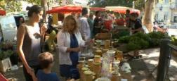 """Audience: La rediffusion de """"Zone Interdite"""" sur les marchés de l'été attire 1 million de téléspectateurs à 23h00 sur M6"""