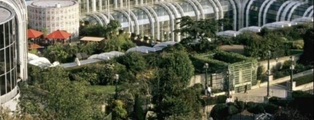 Jardin jean marc morandini for Jardin nelson mandela